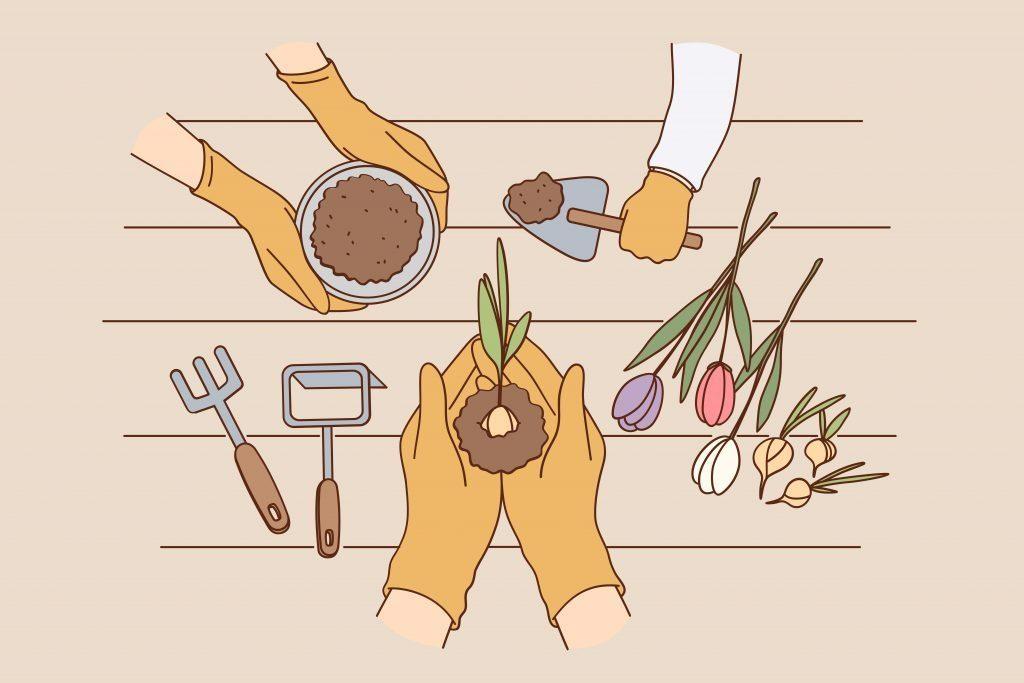 jardinage_montessori
